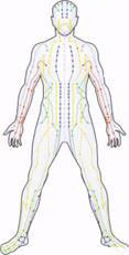 acupuncture_and_fibromyalgia